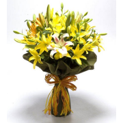 All Yellow Flowers